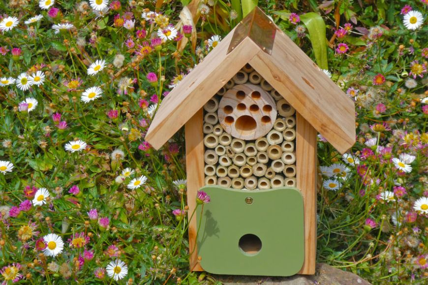 solitary bee house | Gardenature