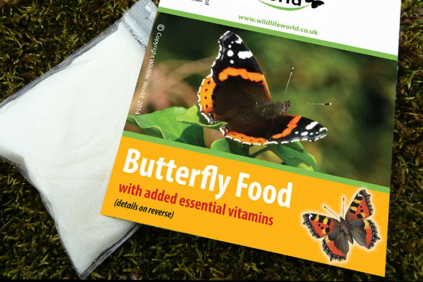 Butterfly food | gardenature.co.uk