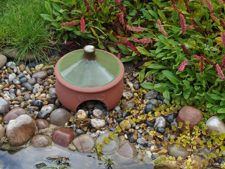 frog habitat, gardenature