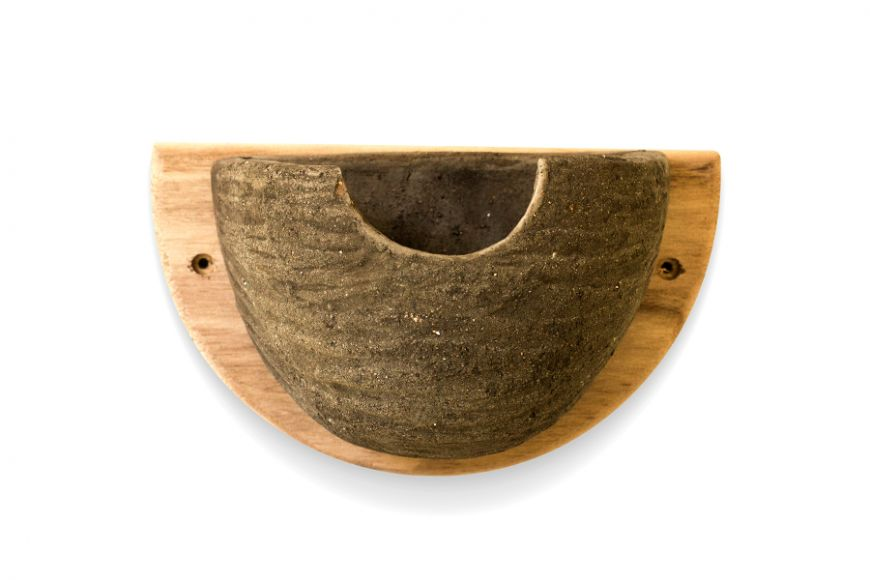 House martin bowls | gardenature.co.uk