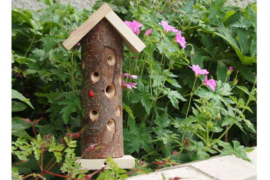 Ladybird tower | Gardenature