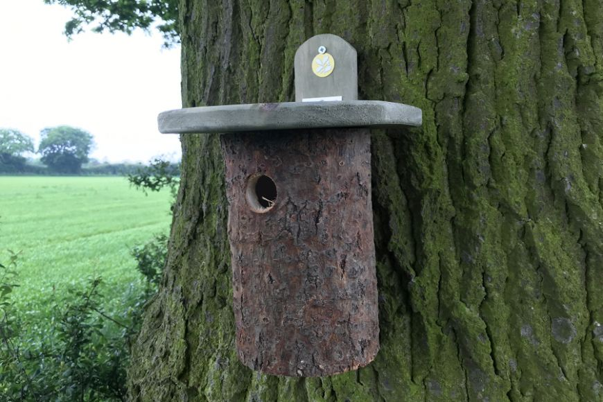 National Trust Log Box   gardenature