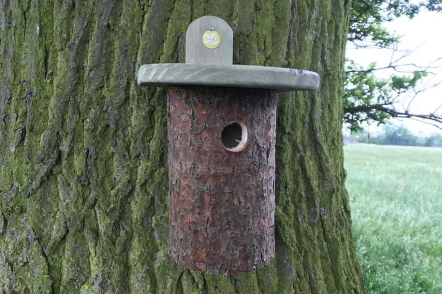 Log Bird House | gardenature.co.uk