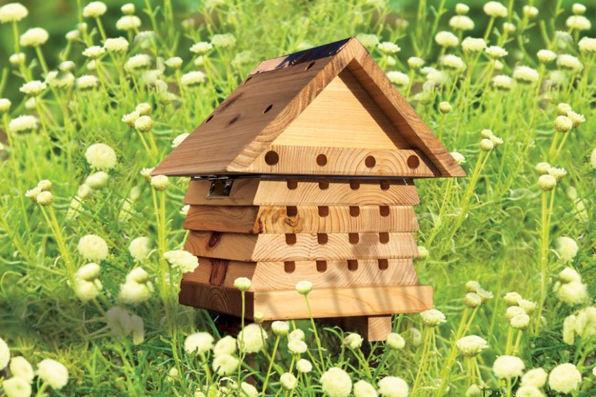 small beehives for garden pollination