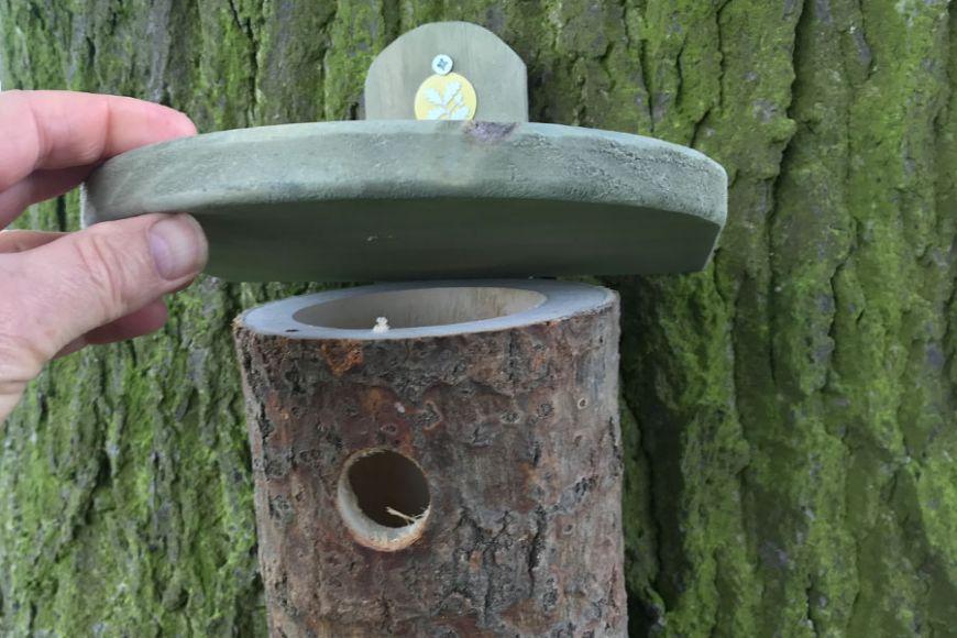 log bird nesting box   gardenature