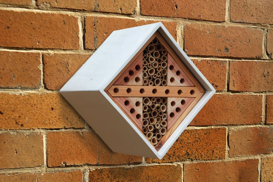 Urban bee Nester | gardenature.co.uk