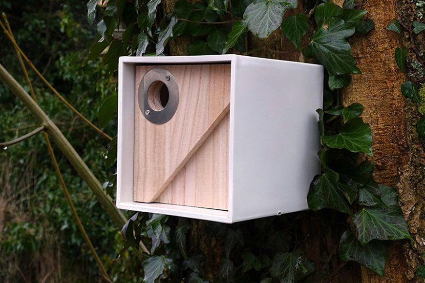 predator resistant bird box