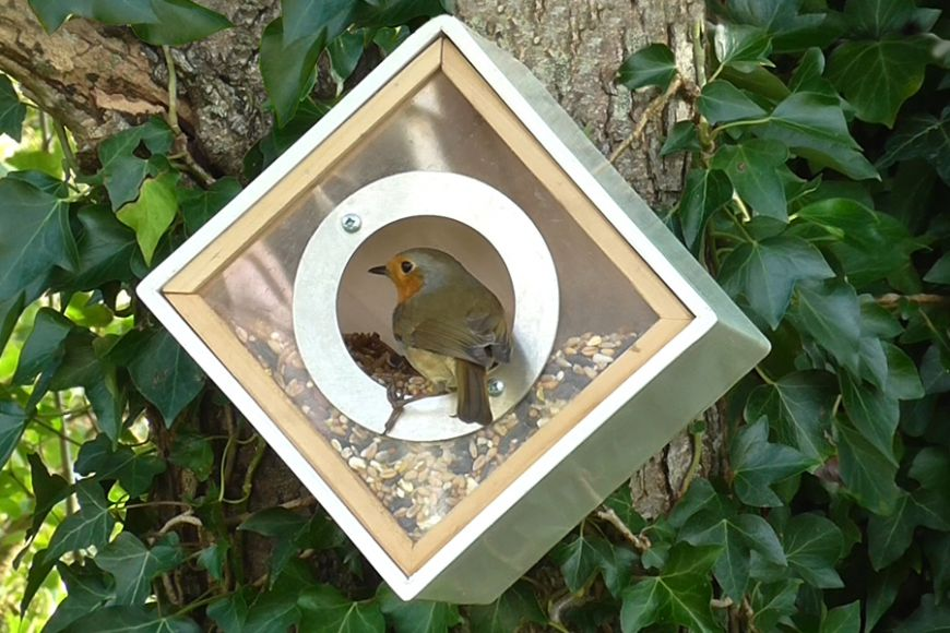 bird feeders | gardenature.co.uk