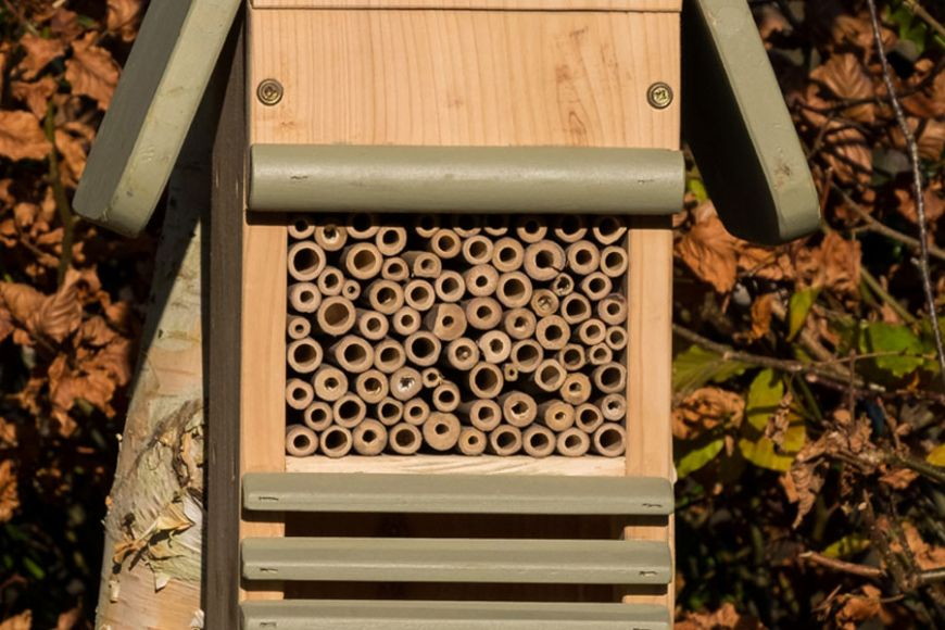Bee, Birds & Insect house | gardenature