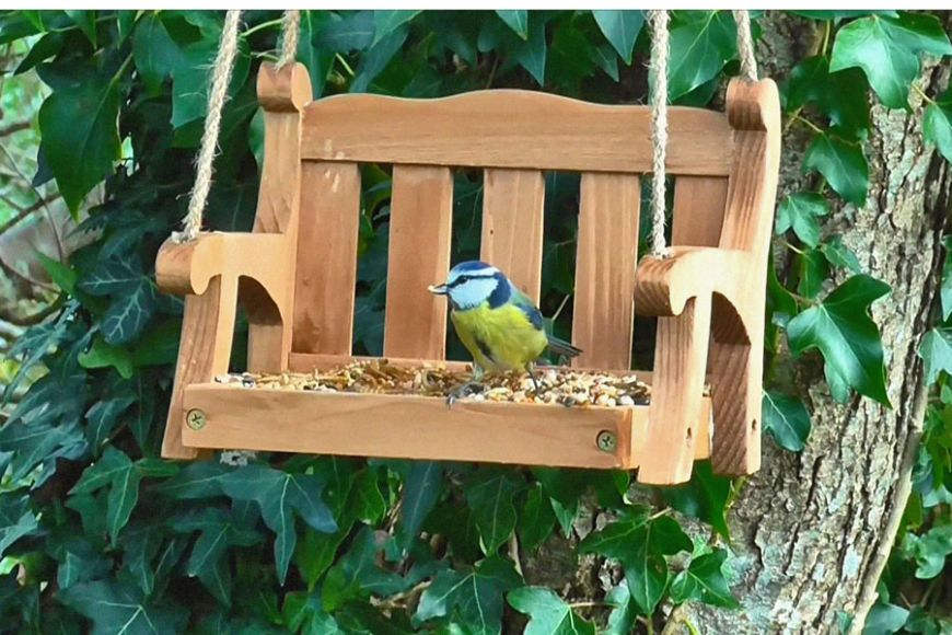 swing seat bird feeder | gardenature