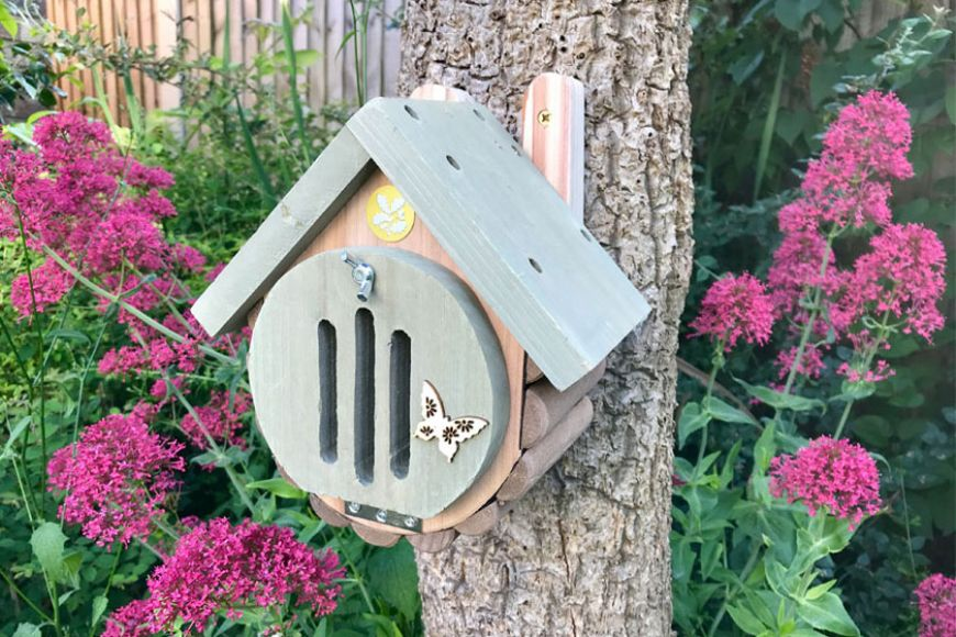 Butterfly and moth house | gardenature