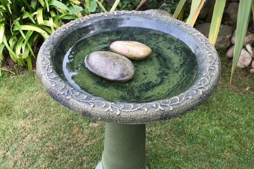 bird baths   gardenature.co.uk
