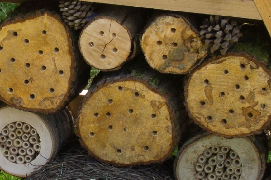 Crittacabin insect hotel |gardenature
