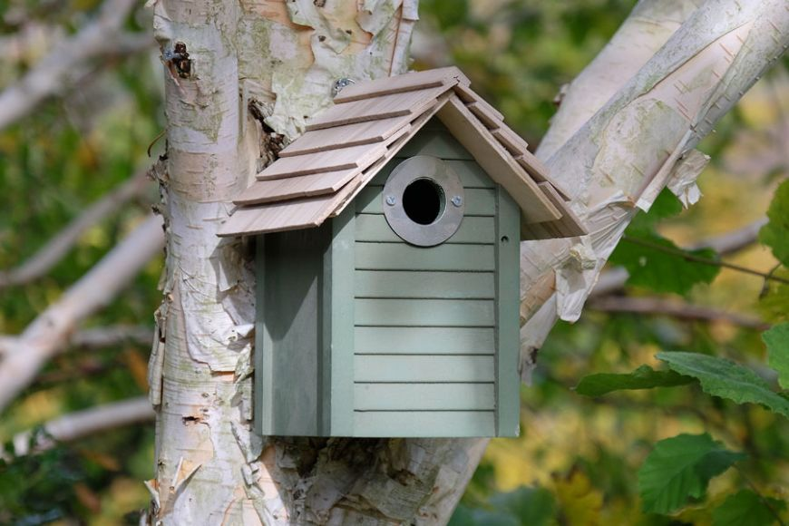 green bird box | gardenature