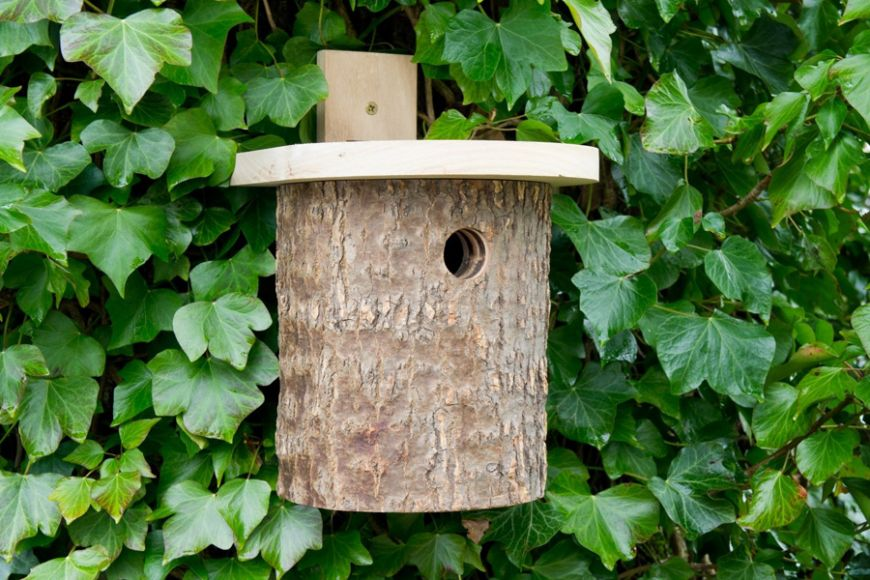 natural log tit box | gardenature.co.uk