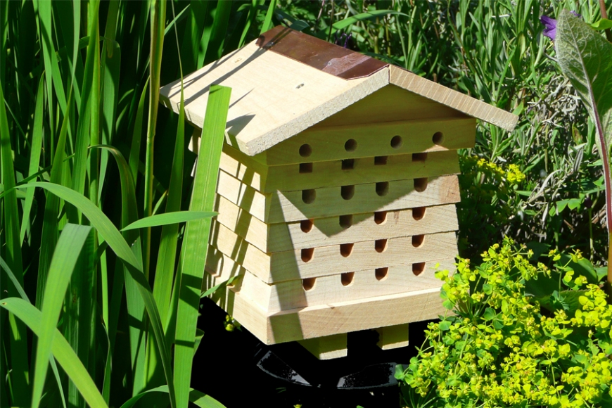 Garden Beehive | gardenature.co.uk