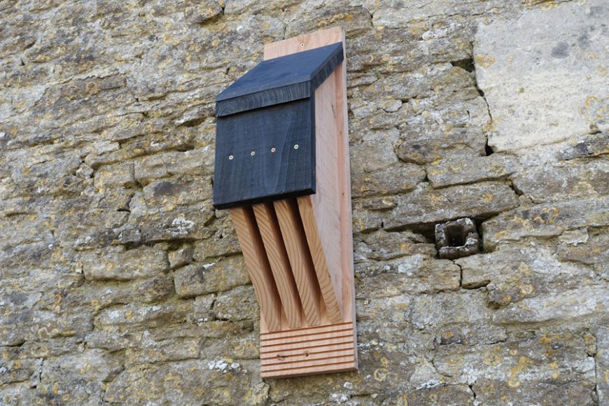 wooden bat boxes, gardenature.co.uk
