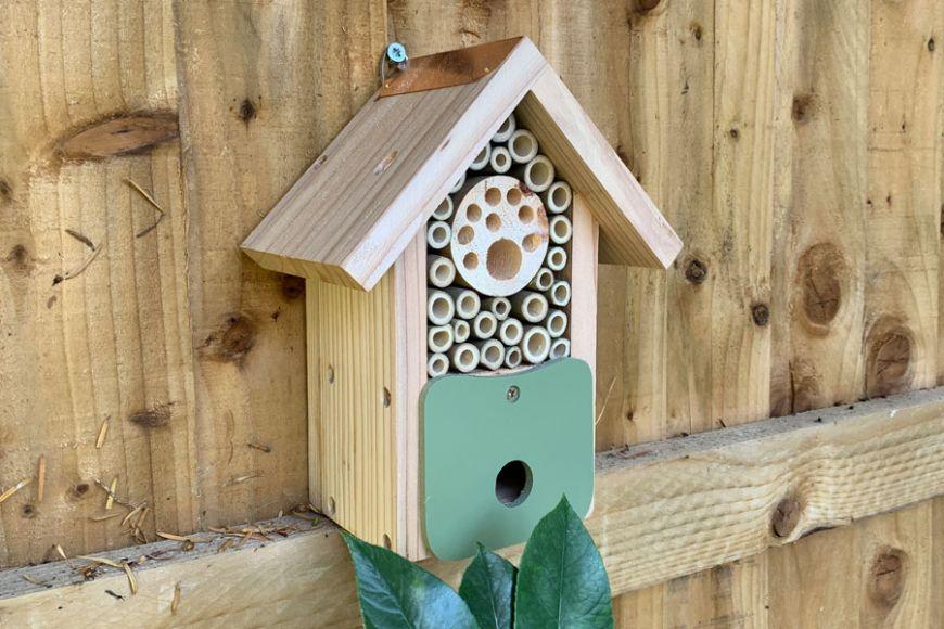 bee and bug barn