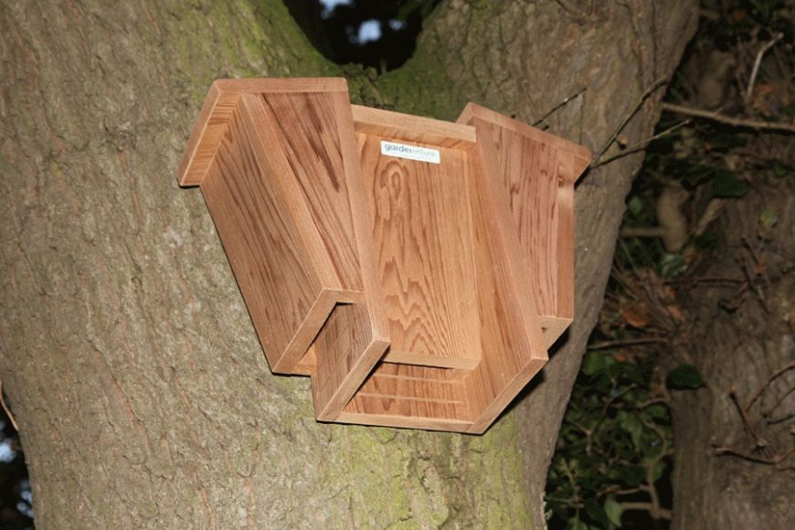 Cardinal Bat Box