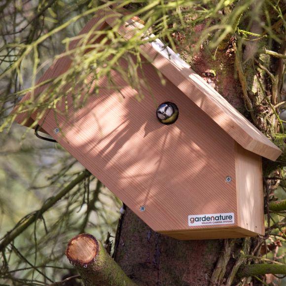 wifi camera bird boxes | Gardenature