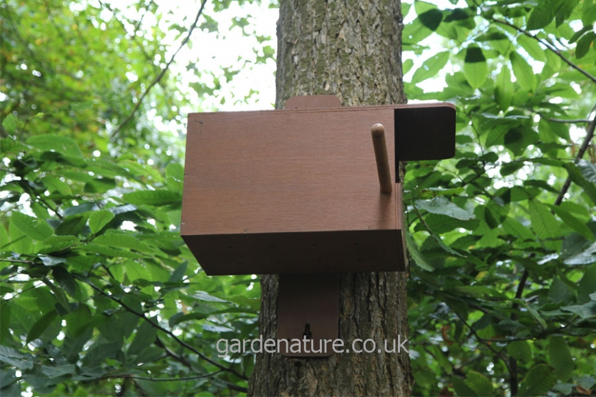 Kestrel box perch |gardenature.co.uk