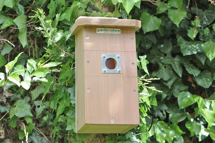 HD camera bird house