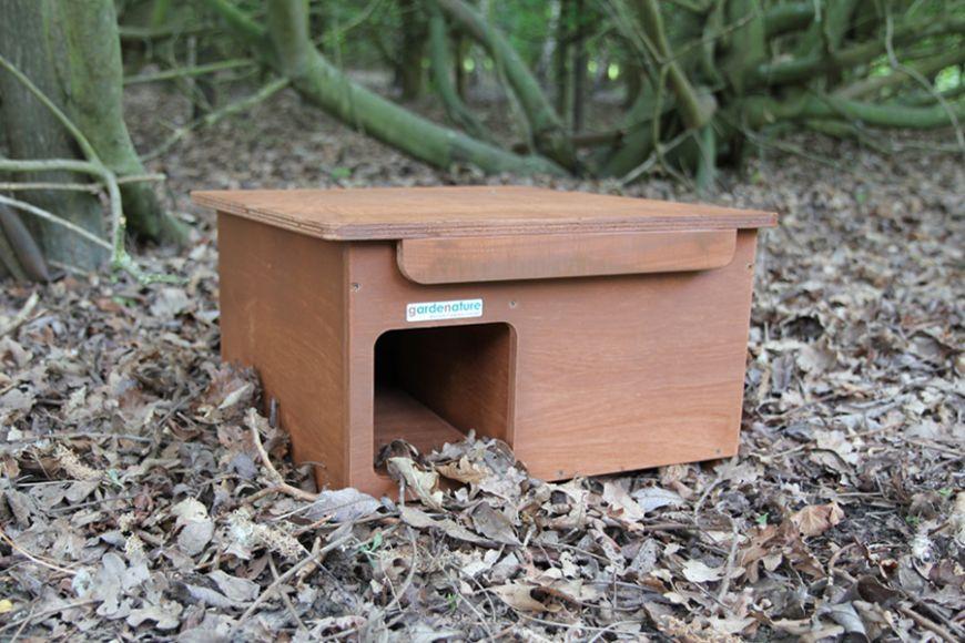 hedgehog house with wifi camera