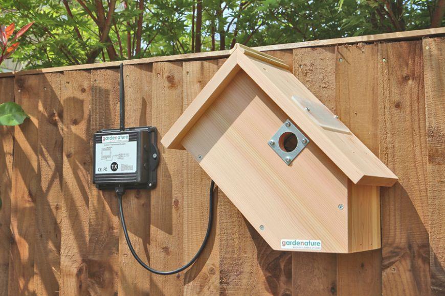 digital wireless camera bird box