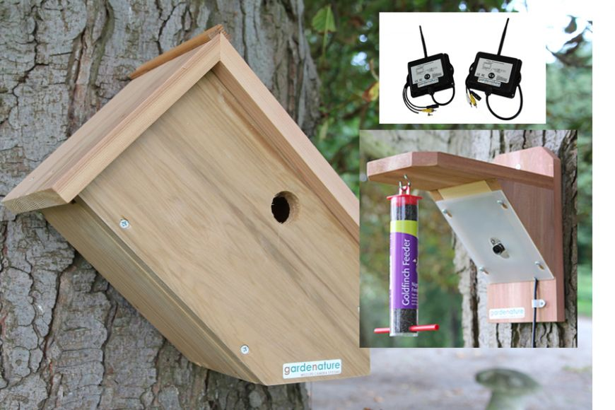 sideview camera bird box and feeder