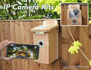 IP Cameras for Bird Boxes and Wildlife | Gardenature