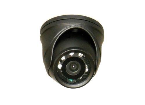 Mini Eyeball Camera | gardenature