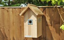 camera bird boxes | Gardenature