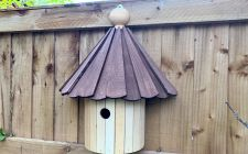 the kirby dovecotebird box