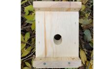 common dormouse box with sloping hole