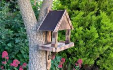 garden wall bird tables | gardenature