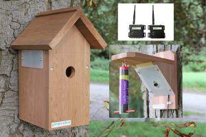 Wireless Bird Box and Feeder Camera System. Ultra Hi Res