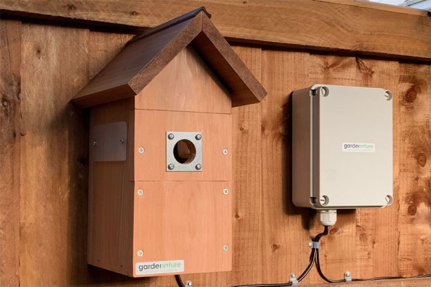 bird box with wireless camera