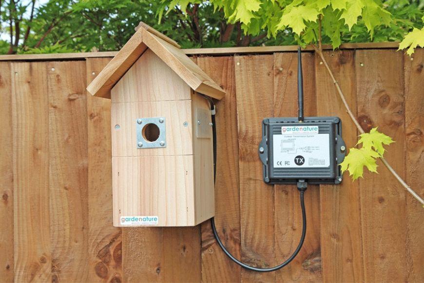 wifi bird box camera | Gardenature
