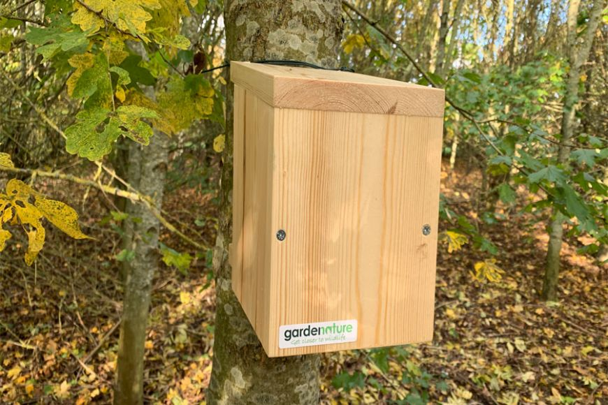 Box for dormice