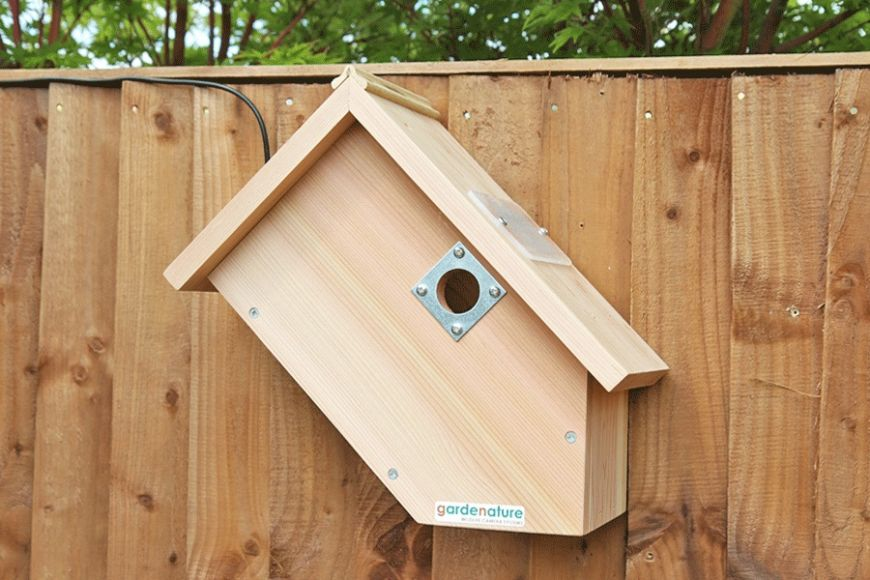sideview camera bird box | gardenature