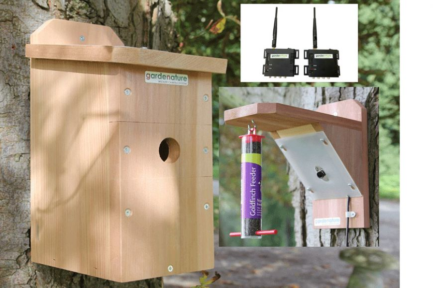 wifi nest box and bird feeder cam