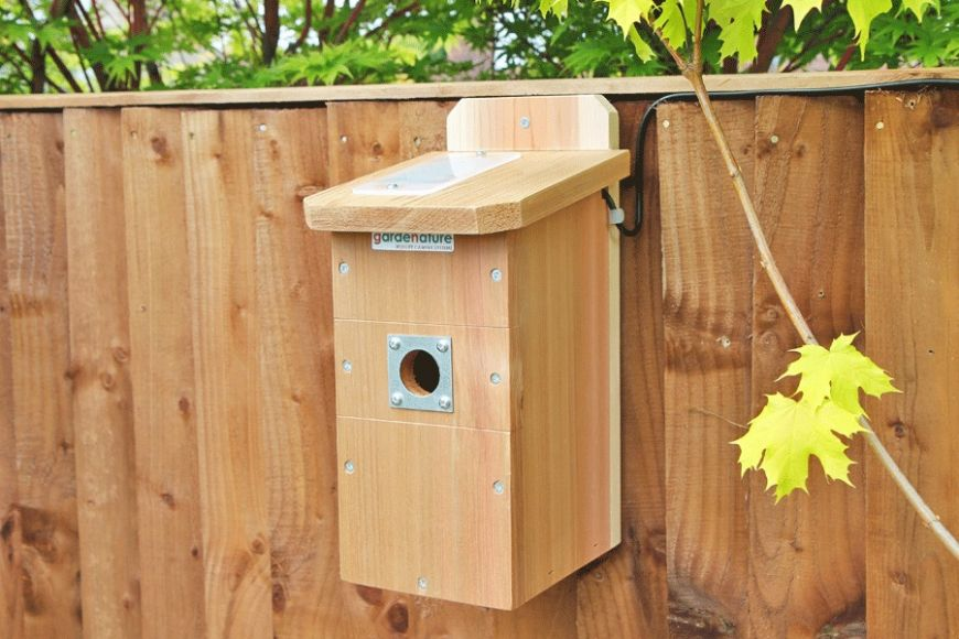 Camera bird box - Gardenature
