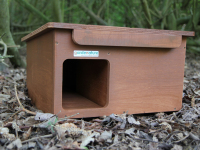 New Hedgehog box