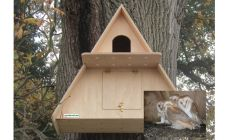 IP Camera Barn Owl Box