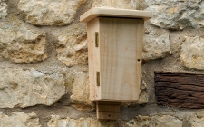 bat box for wall - gardenature.co.uk