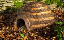 Igloo hedgehog home - gardenature.co.uk