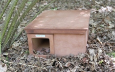 hedgehog house. gardenature.co.uk