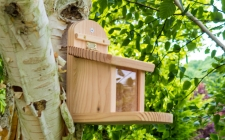 squirrel feeder - gardenature.co.uk