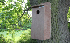 Starling Nestbox - Marine ply