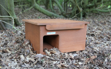 garden hedgehog box with camera